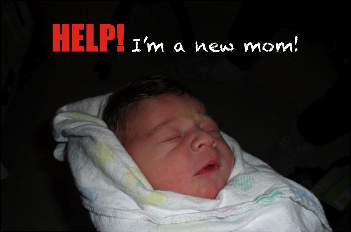 Help! I'm a new mom! – monicaswitzer ca