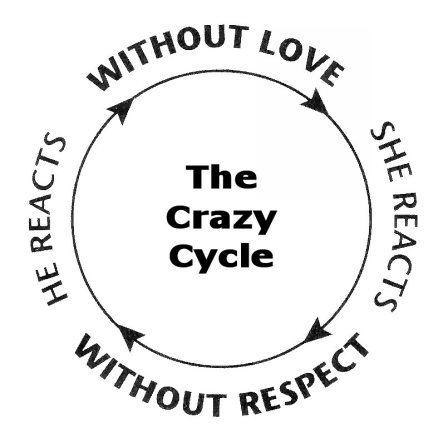 the-crazy-cycle