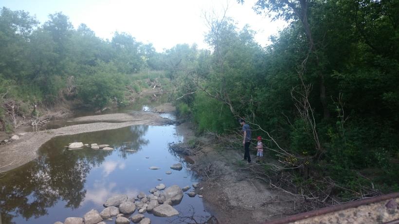springside Creek